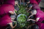 Монахи готовят обед для 30 тысяч участников учений Его Святейшества Далай-ламы в монастыре Сера Чже. Билакуппе, штат Карнатака, Индия. 3о декабря 2015 г. Фото: Тензин Чойджор (офис ЕСДЛ)