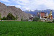 Вид на монастырь Ликир. Ладак, штат Джамму и Кашмир, Индия. 30 июня 2014 г. Фото: Тензин Чойджор (офис ЕСДЛ)