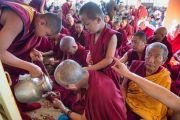 Монахи угощают чаем участников учений Его Святейшества Далай-ламы, которые он даровал по просьбе группы буддистов из Кореи. Дхарамсала, Индия. 13 ноября 2014 г. Фото: Тензин Чойджор (офис ЕСДЛ)