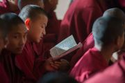 Төвөд лам нар Дээрхийн Гэгээнтний айлдварыг даган уншиж байна. Энэтхэг, Дарамсала. 2014.12.02. Зургийг Тэнзин Чойжор (ДЛО)
