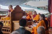 Третий день учений. Линг Ринпчое слушает наставления Его Святейшества Далай-ламы в монастыре Ташилунпо. Билакуппе, штат Карнатака, Индия. 22 декабря 2015 г. Фото: Тензин Чойджор (офис ЕСДЛ)