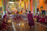 Дээрхийн Гэгээнтэн Далай Лам даншүг өргөх ёслолын дараа бага лам нар дагсал хаялцахыг харж сонирхож байгаа нь. Энэтхэг, Карнатака, Билакуппе, Дашлхүнбо хийд. 2016.01.01. Гэрэл зургийг Тэнзин Чойжор (ДЛО)