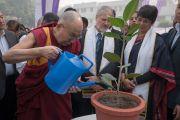 Дээрхийн Гэгээнтэн Далай Лам Амбедкарийн их сургуулийн ойн баярт оролцох үеэр мод тарив. Энэтхэг, Шинэ Дели. 2016.12.09. Гэрэл зургийг Тэнзин Чойжор (ДЛО)