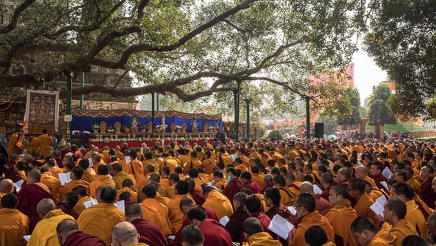 Далай-лама принял участие в молебне у дерева бодхи