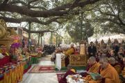 Его Святейшество Далай-лама под сенью священного дерева бодхи во время молебна у ступы Махабодхи. Бодхгая, штат Бихар, Индия. 17 января 2018 г. Фото: Мануэль Бауэр.