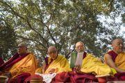Старшие монахи принимают участие в молитвенном собрании с Его Святейшеством Далай-ламой. Бодхгая, штат Бихар, Индия. 17 января 2018 г. Фото: Тензин Чойджор.