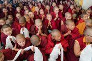 Монахини почтительно провожают Его Святейшество Далай-ламу, покидающего главный тибетский храм по завершении церемонии подношения молебна о долгой жизни. Дхарамсала, Индия. 1 марта 2018 г. Фото: Тензин Чойджор.